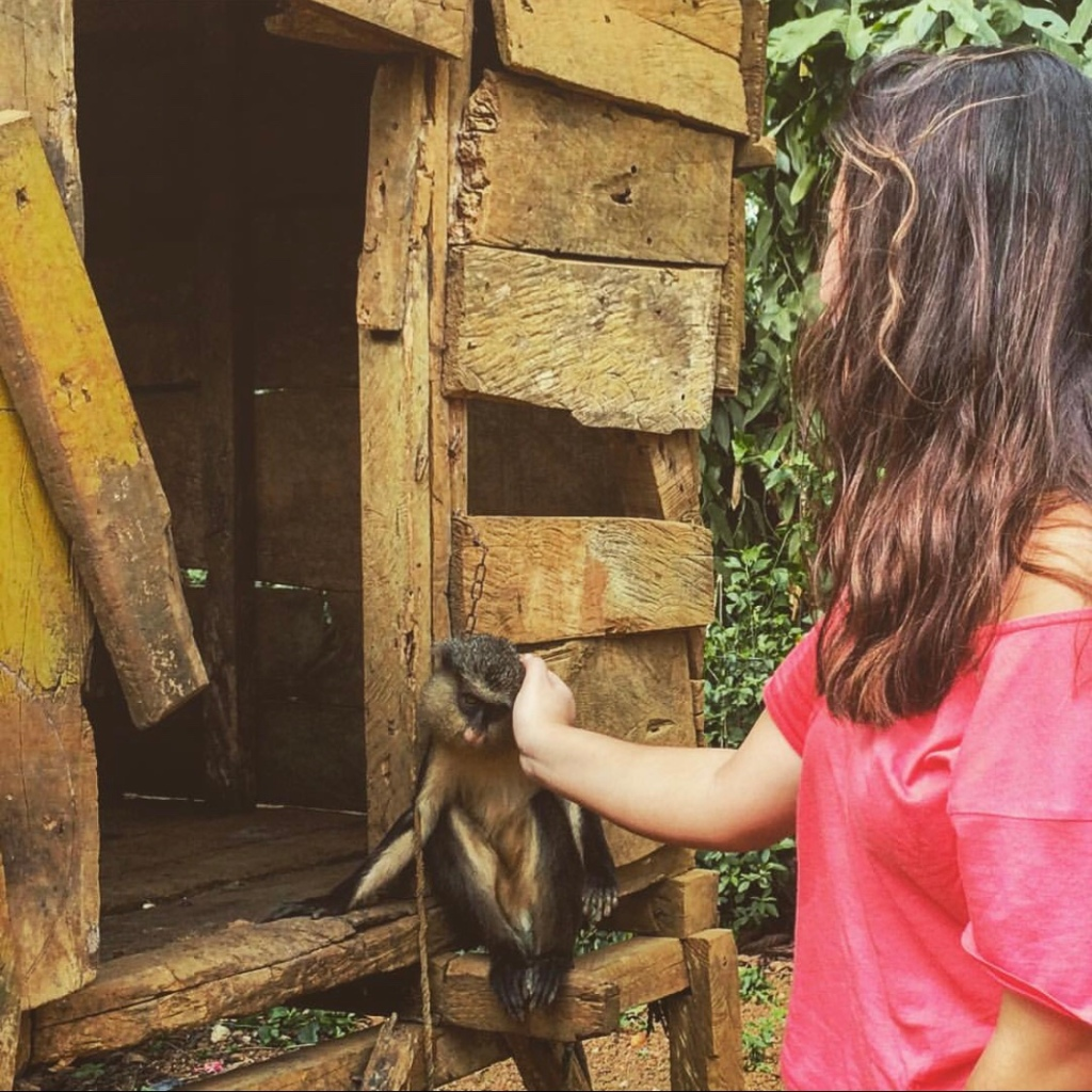 Girl pampering a monkey in S. Tome and Principe