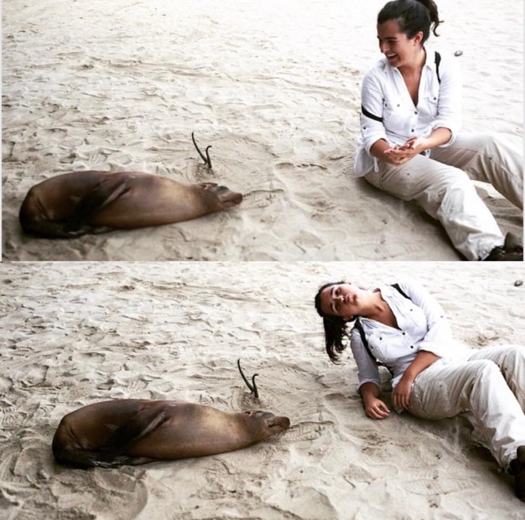 Girl on the beach with a sea lion in the Galapagos Islands, Ecuador