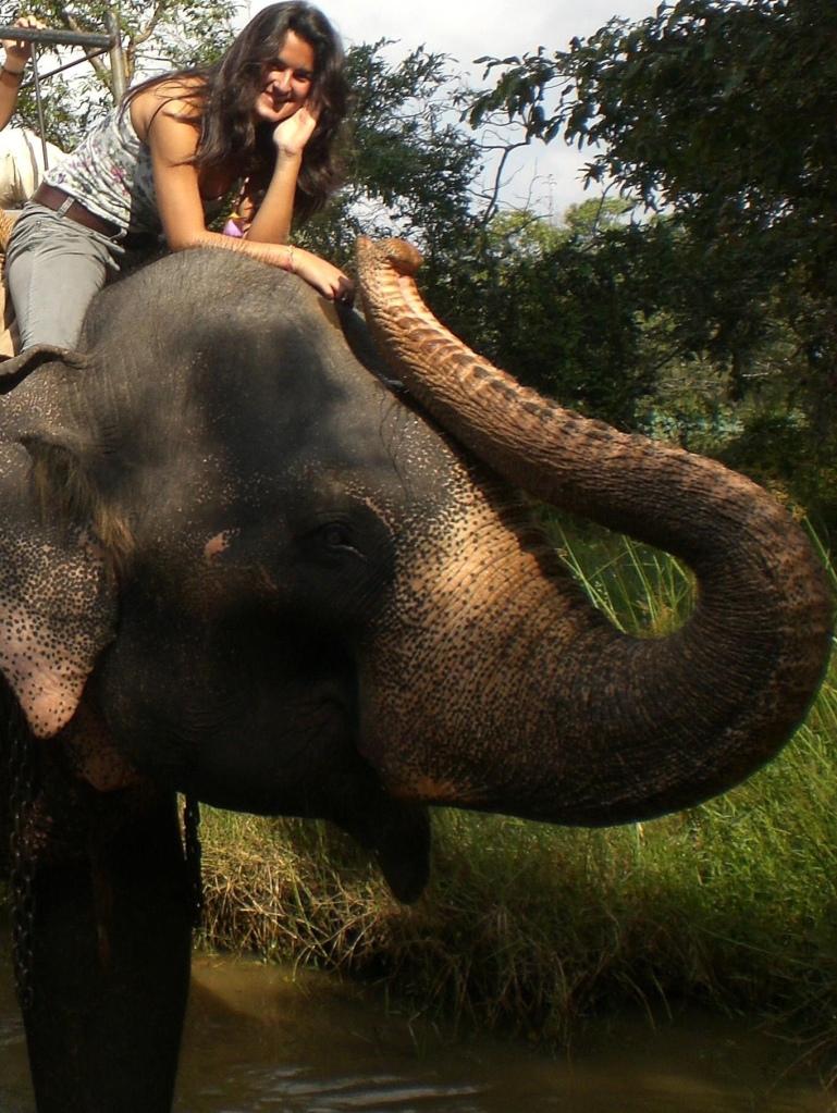 Girl riding an elephant at an elephant  camp in Sri Lanka (Habarana)