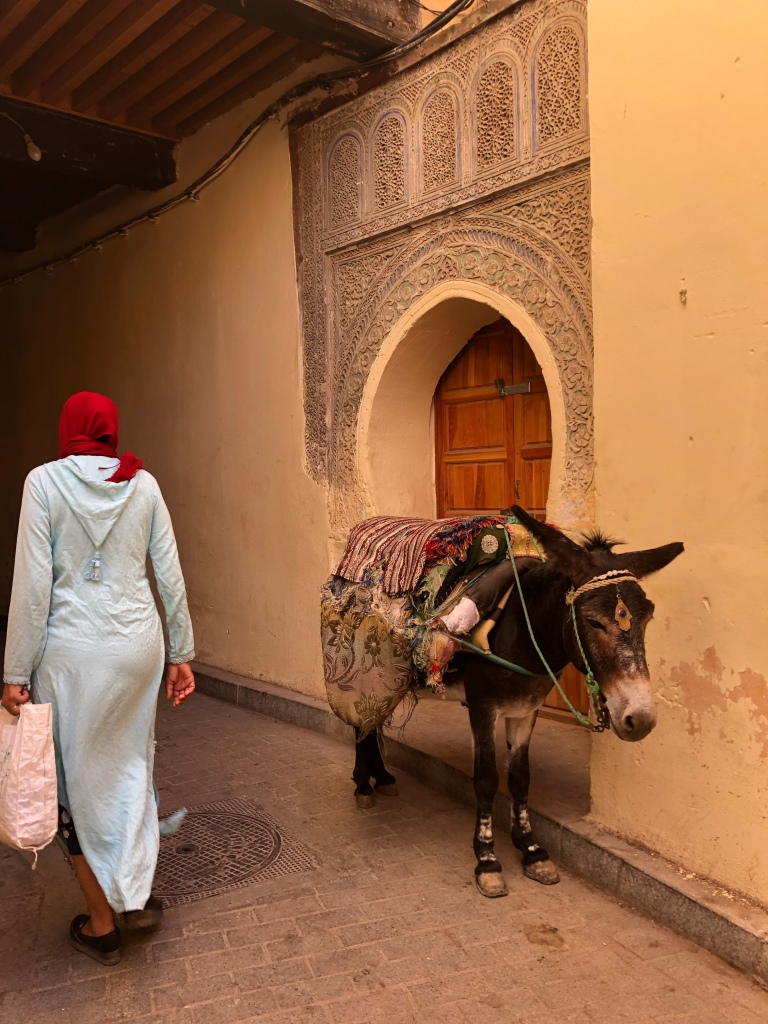 A woman an a donkey in Fez, Morocco