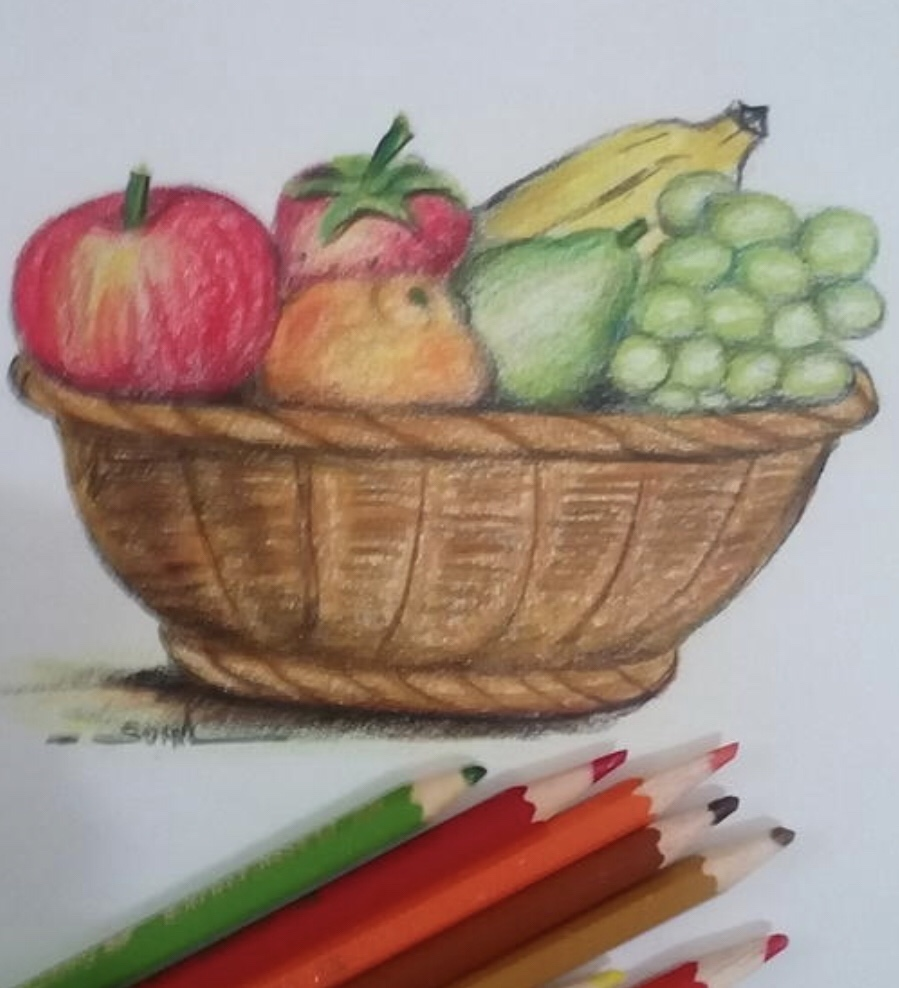 Fruit basket drawing  in colours
